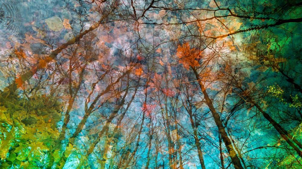 Прикосновения Осени