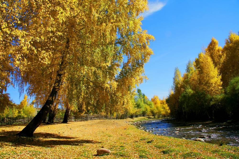 Осенний полдень