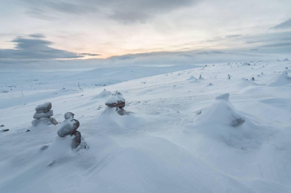 Ледяная армия
