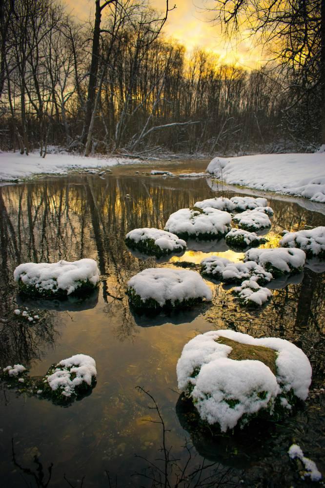 Vaikne talvehommik