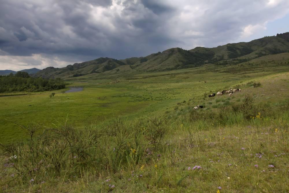 Долина Кюг
