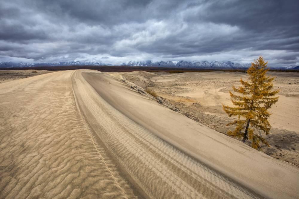 В Чарских песках