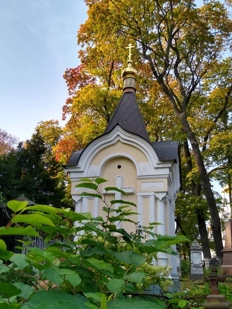 Священые рощи Донского монастыря