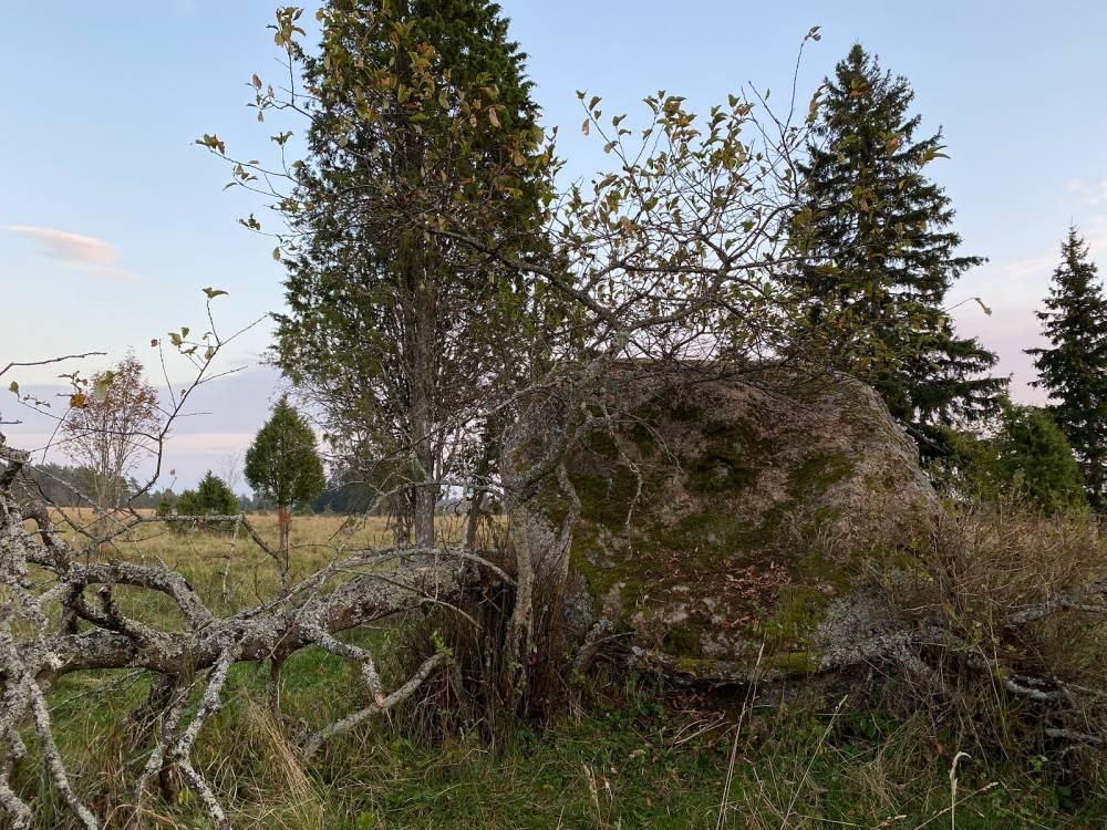Uusküla kivi