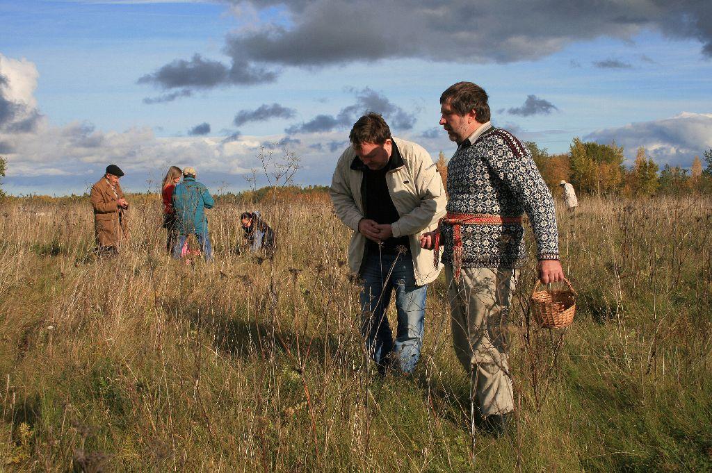 Rahvas hargnes Hiiemäele laiali, et tammetõrusid sambla alla pista