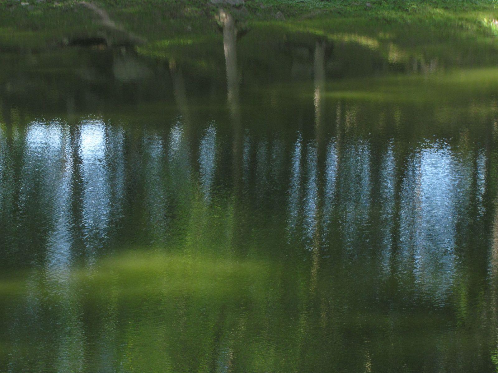 Vesi ja värvid. Akvarell