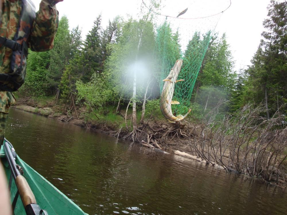 Рыболовецкие места реки Ирва