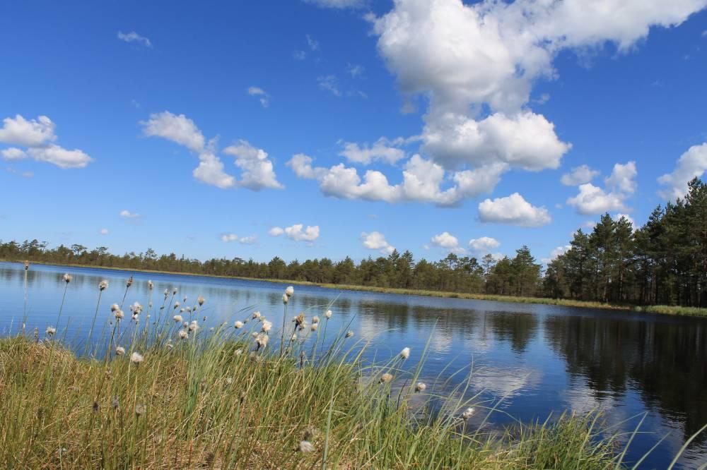 Lao järv