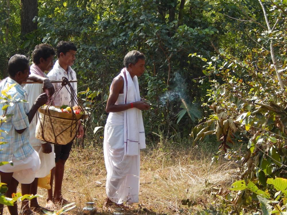 Prayer at sacred forest