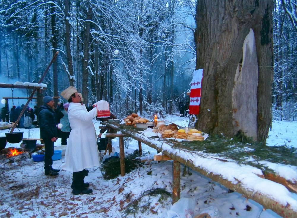 Древний дуб - Онапу (священное дерево) и первые молитвы большого дня. Vana tamm - Onapu (pühapuu) ja suure päeva esimesed palved.