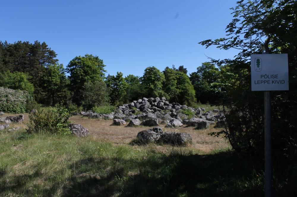 Põlise leppe kivid
