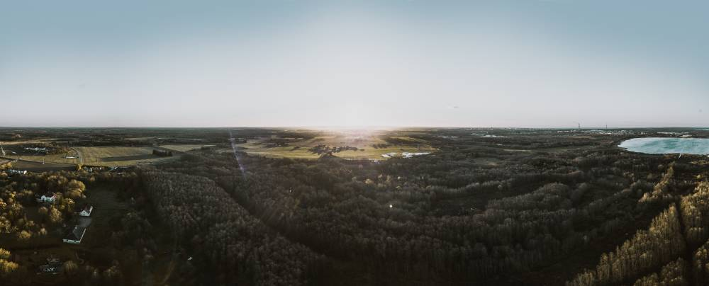 Päikese paitavad kiired Maardu hiiemetsa kohal