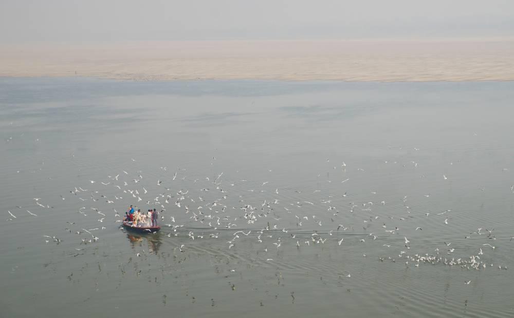 Кормление птиц на Ганге
