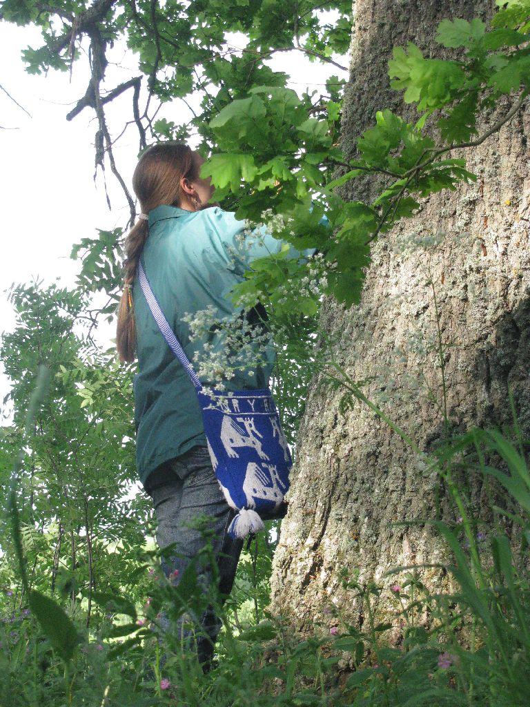 Hiiepuu juures