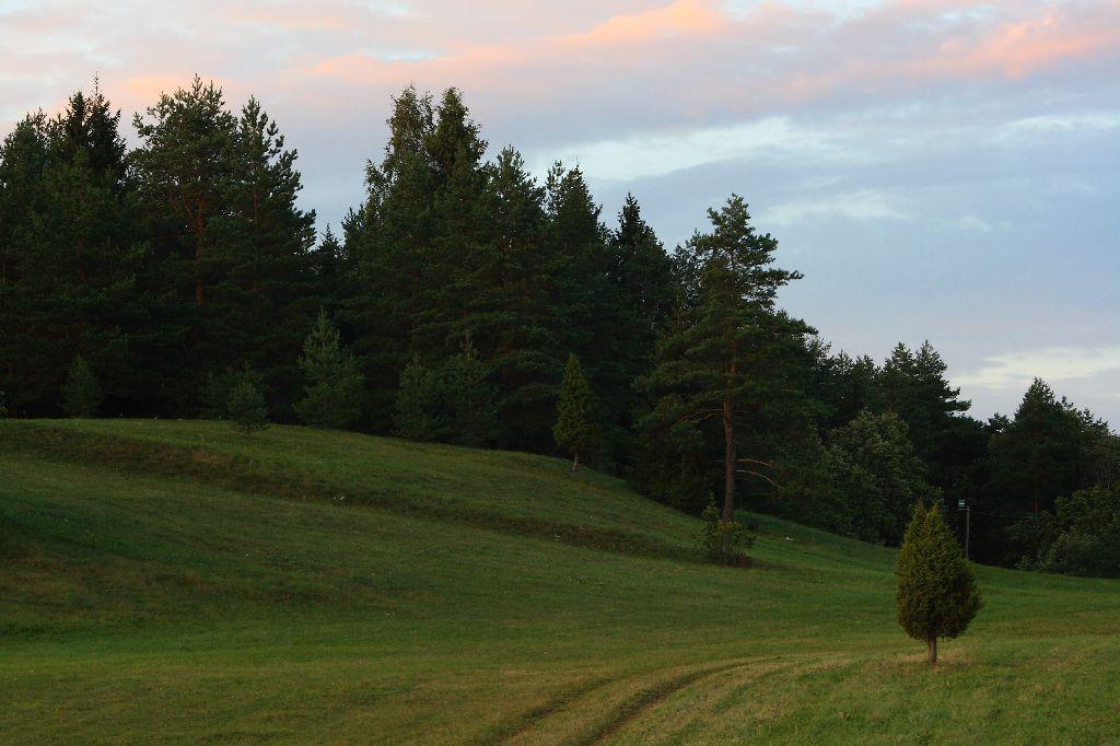 Paluküla Hiiemägi